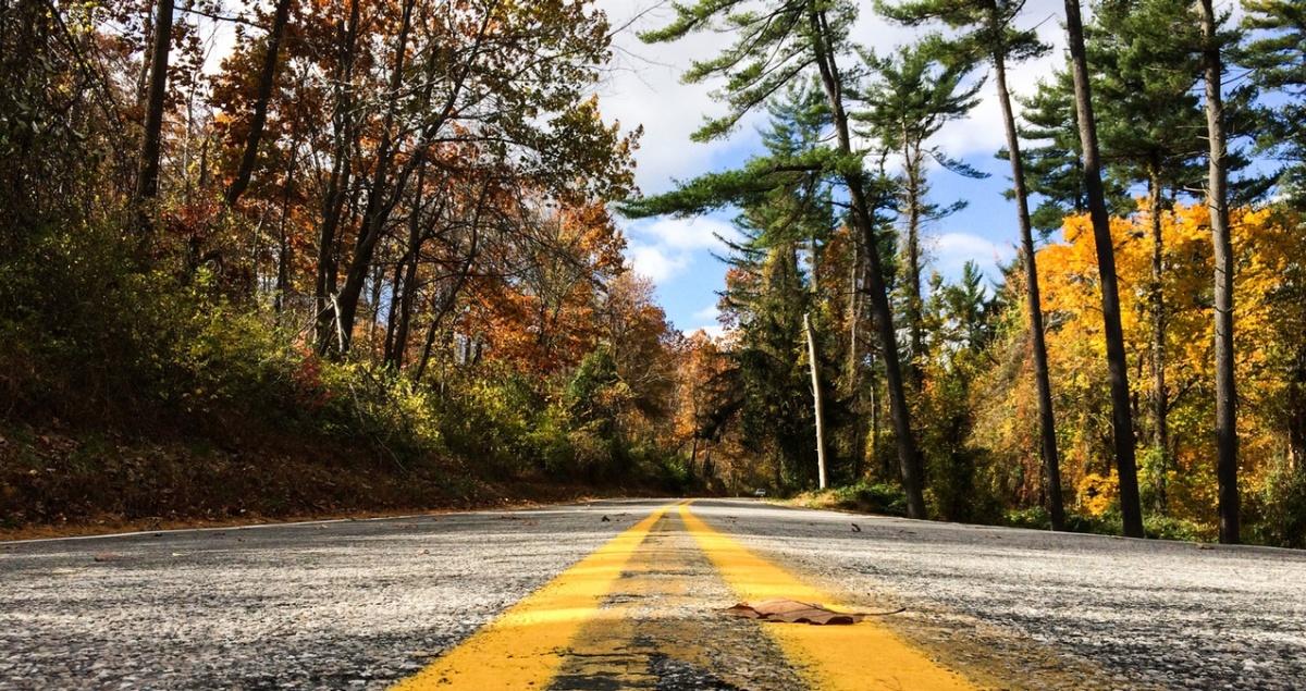 Lezioni di guida: una preghiera per laserenità.